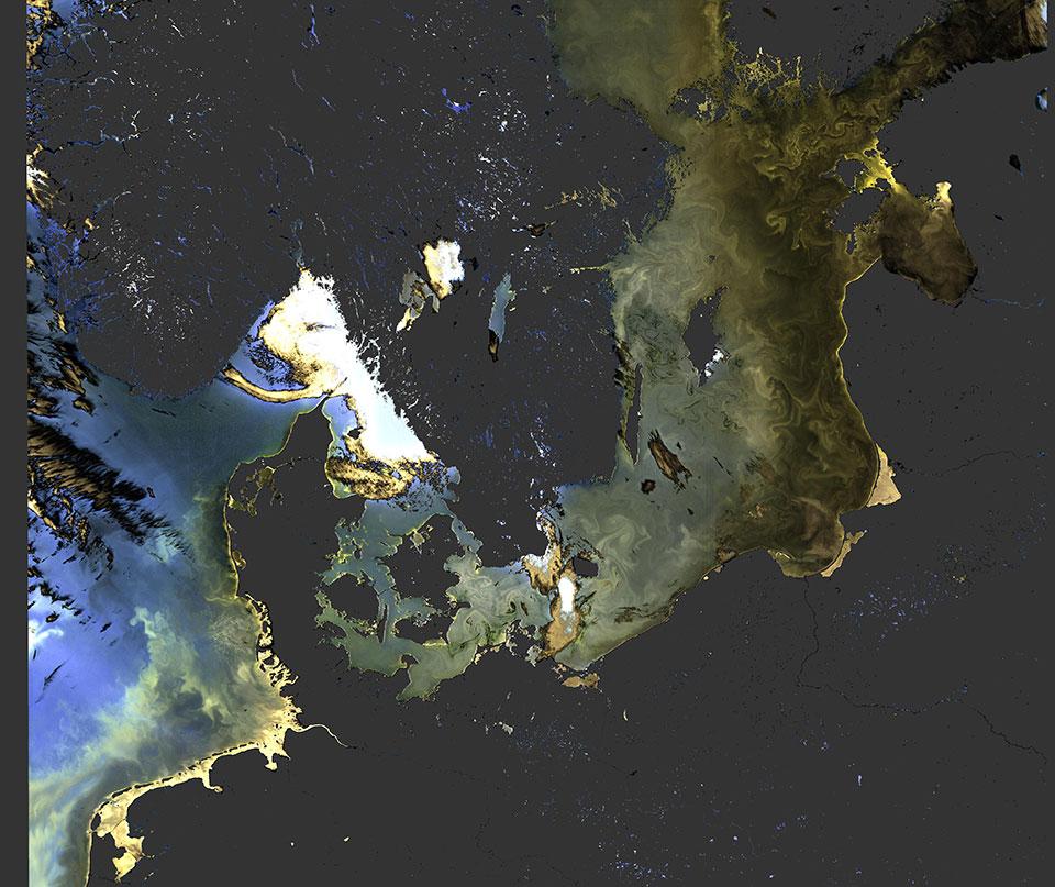 Sentinel-3 OLCI, 20 July 03:00 UTC