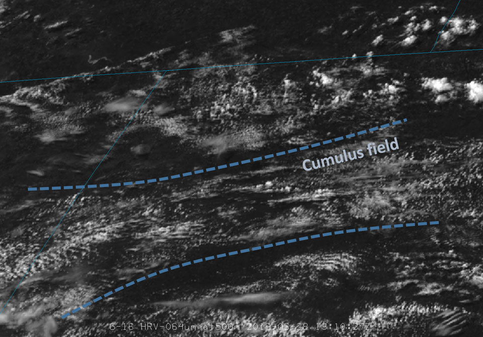 GOES-16 Visible showing the cumulus field, 28 June 19:10 UTC