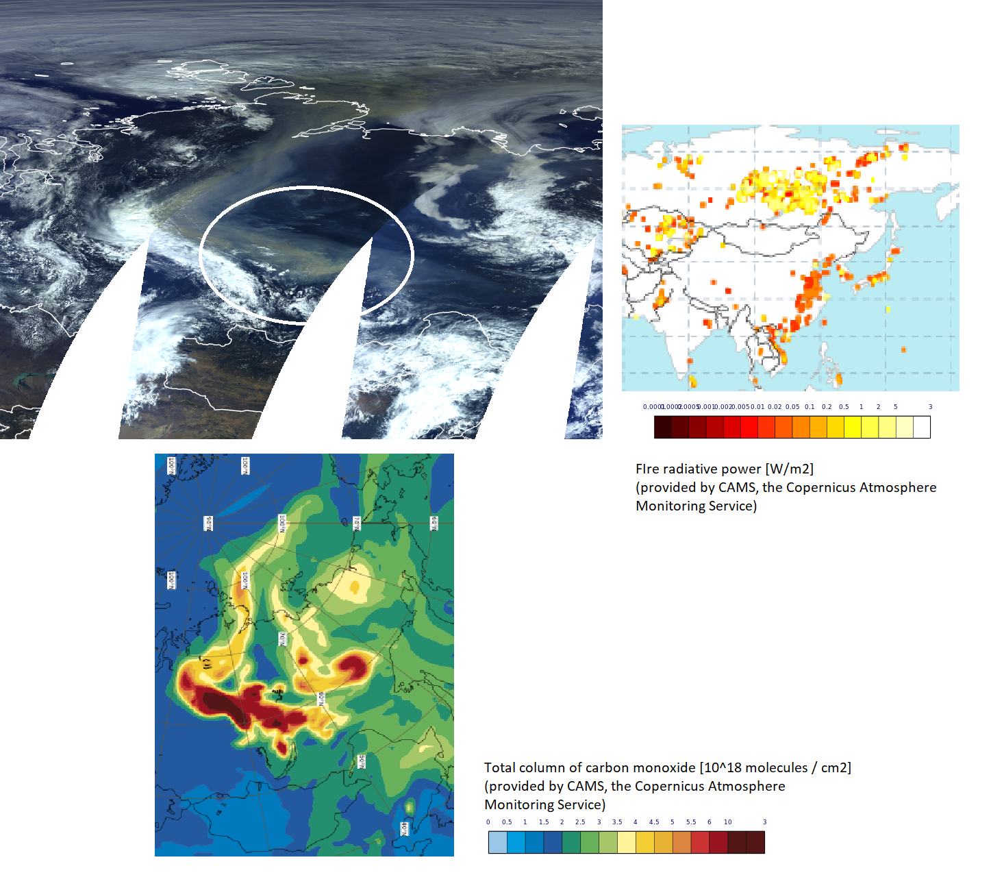Sentinel-3 OLCI True Colour RGB, 10 August 03:44 UTC, compared with the CAMS fire intensity and carbon monoxide analysis products