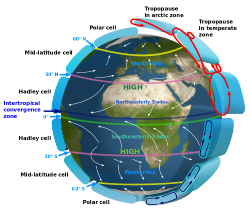 Global atmospheric circulation and surface winds