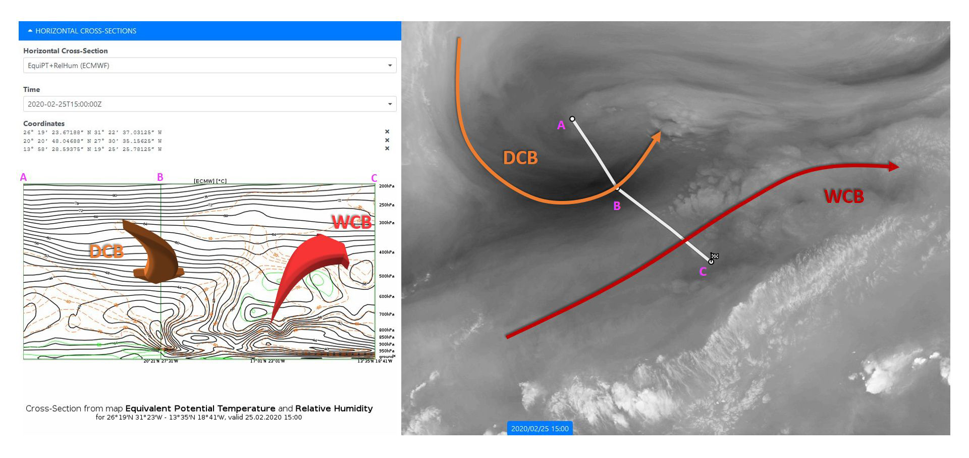 Vertical cross-section cutting through both DCB and WCB (left panel), and associated WV6.2 image (right panel). DCB is illustrated only by the yellow arrows and WCB by red.