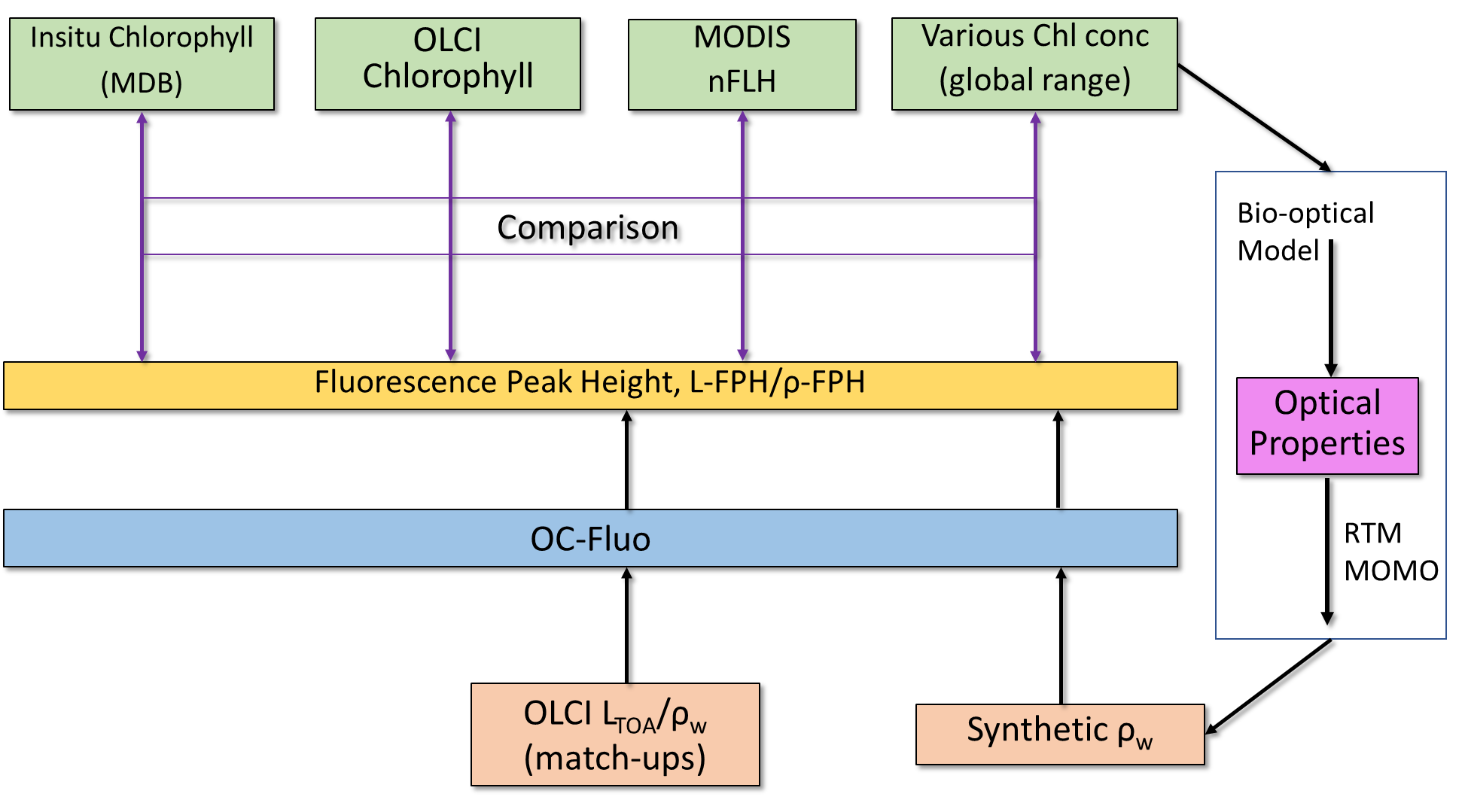 Figure 3: Validation approach for the OC-Fluo algorithm