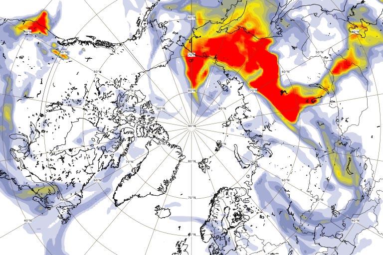 Russian Fires - 5 Biomass