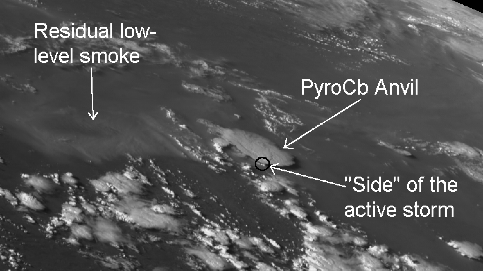 Fire-induced convection from Russian wildfires