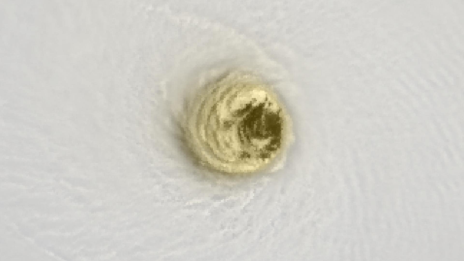 Typhoon Nepartak