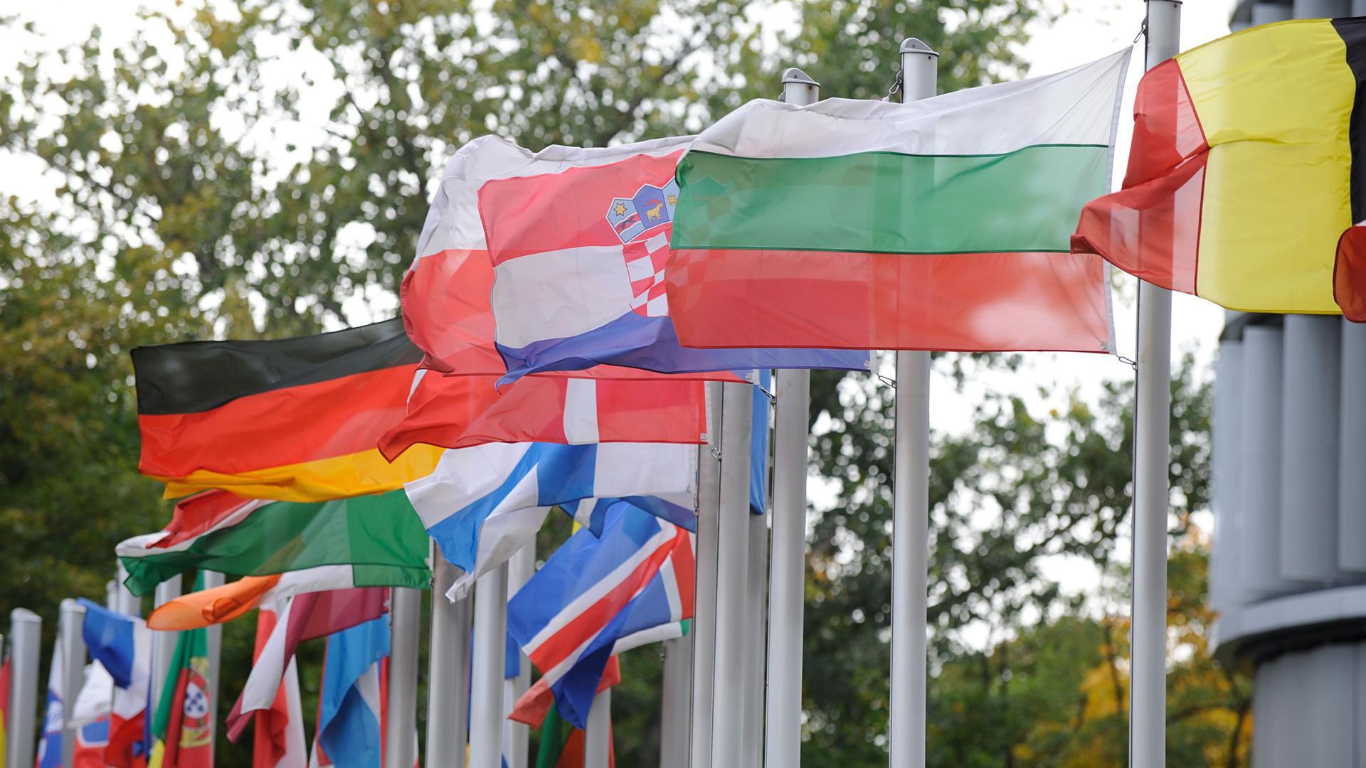 Member State Flags