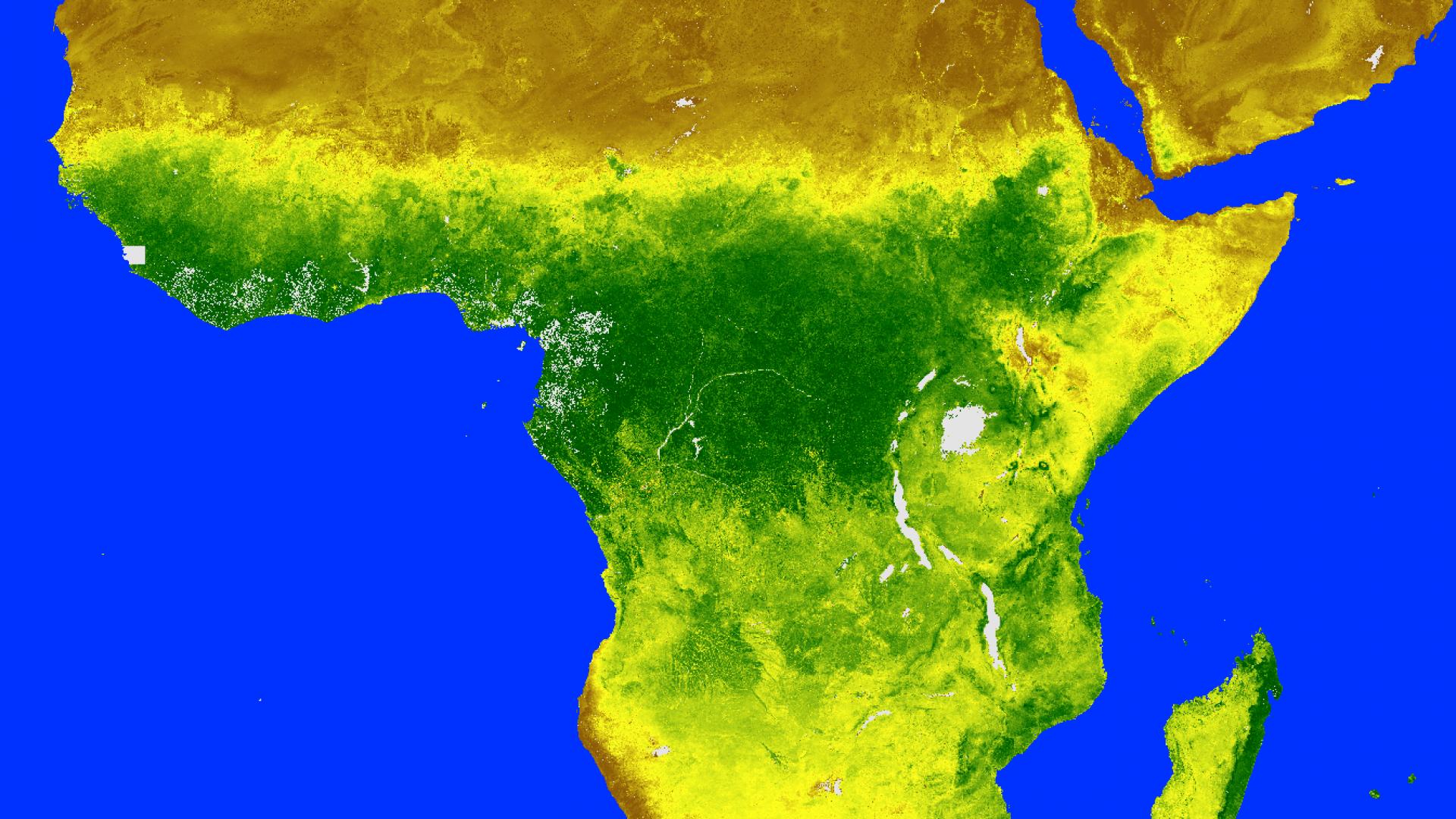 NDVI, 1 July 2020 00:00 UTC