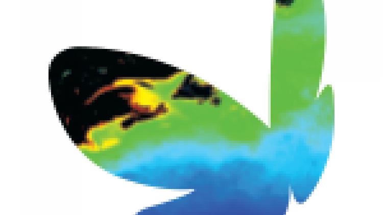 2015 EMSC conference logo
