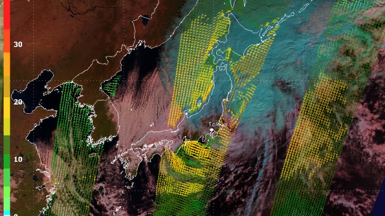 Typhoon Wipha pummels Tokyo