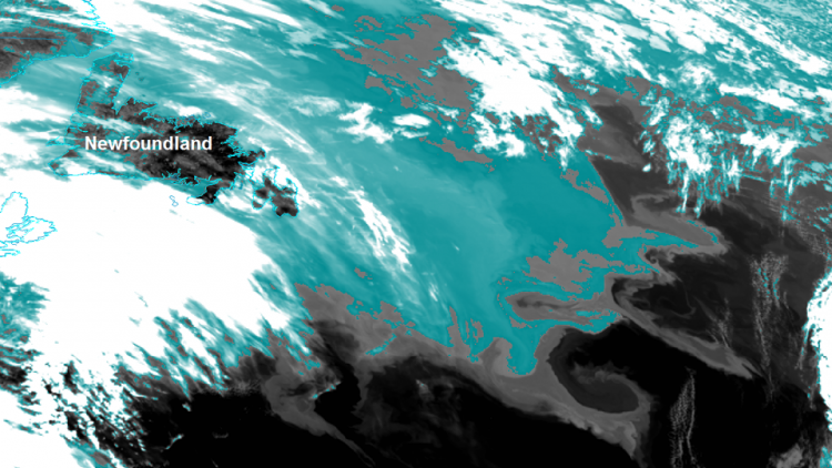 Sea-ice melt resulted in cold water spill over the Labrador Current