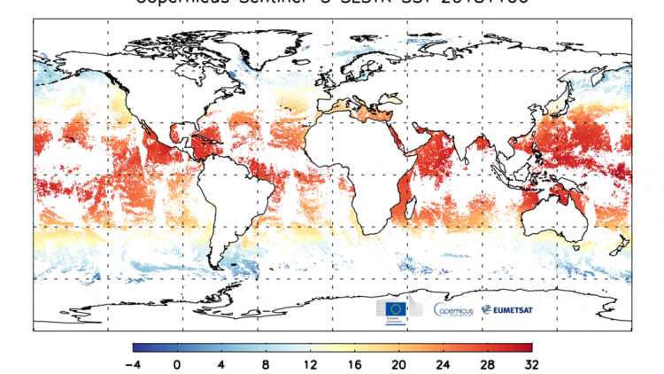 Sentinel-3A and B Sea Surface Temperature 6 Nov 2018