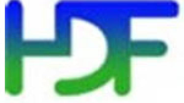 HDF5 logo