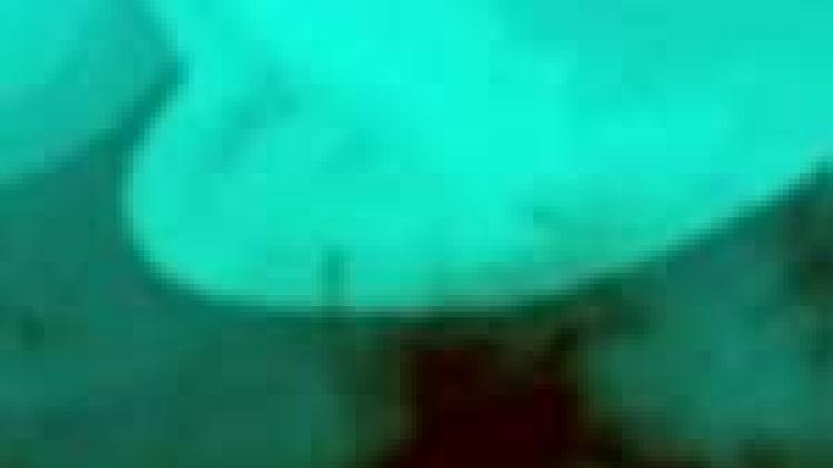 Ocean eddies in the South Atlantic