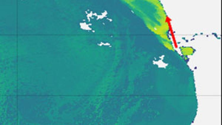 Using Sentinel-3 to monitor chlorophyll concentration