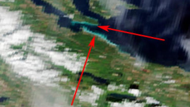 Herring spawn seen from space