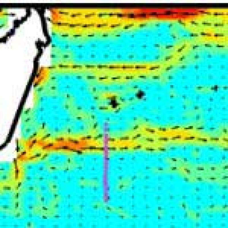 Discovering an ocean current in the 21st century with altimetry