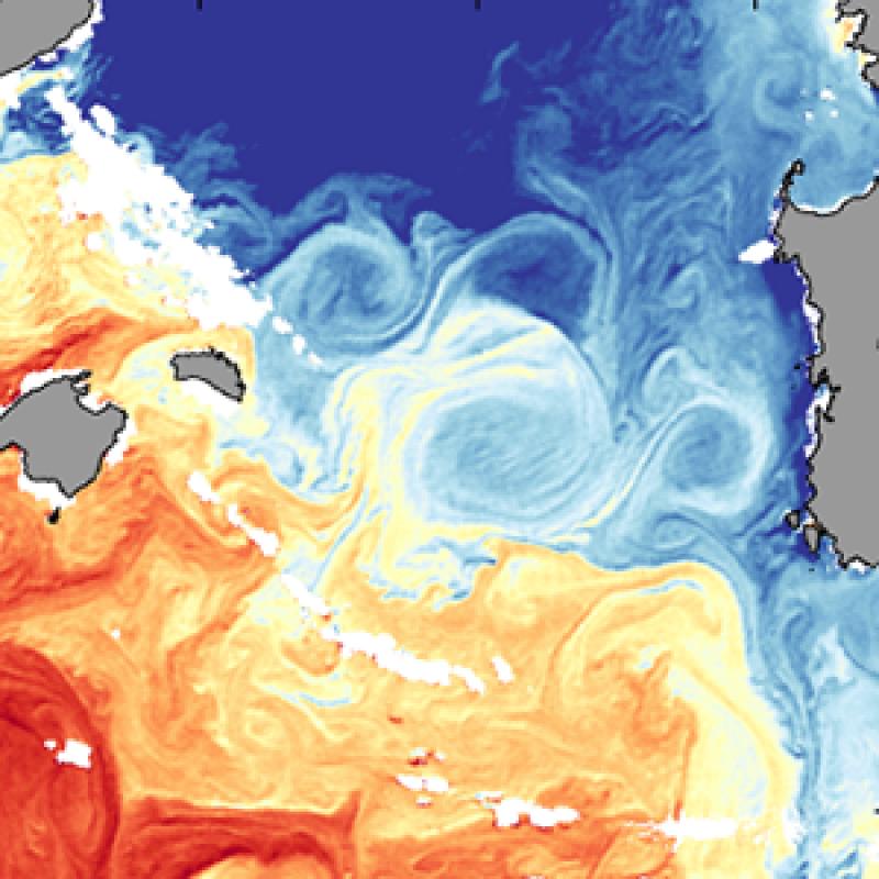 Anticyclonic eddy in the Mediterranean Sea
