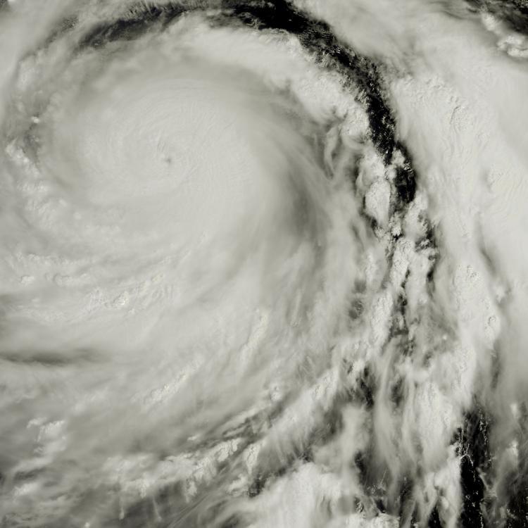 Devastating Typhoon Hagibis