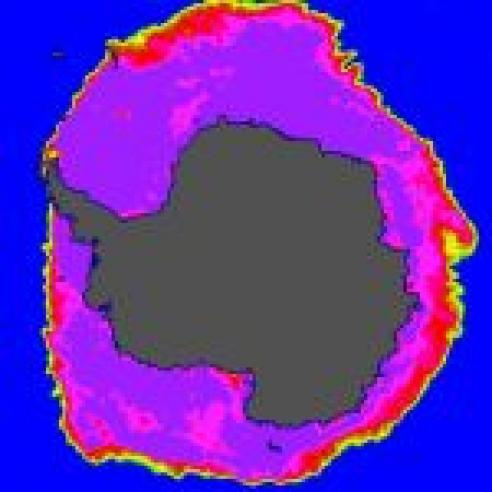 Antarctic sea ice reaches new maximum extent