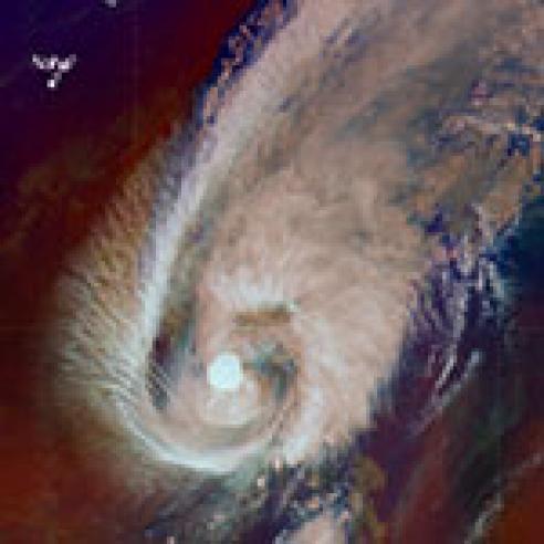 Typhoon Infa