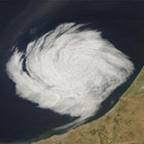 Low cloud vortices off coast of Morocco