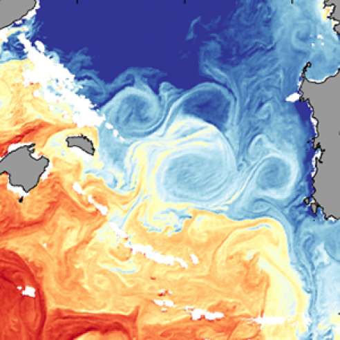 Anticyclonic eddy in the Mediterranean Sea