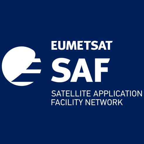 SAF Network Logo