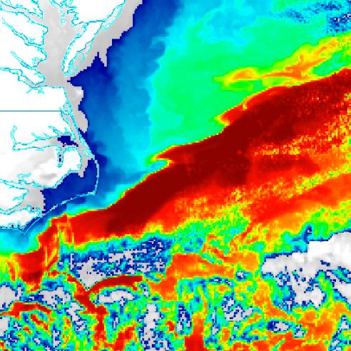 Gulf Stream temperature TN