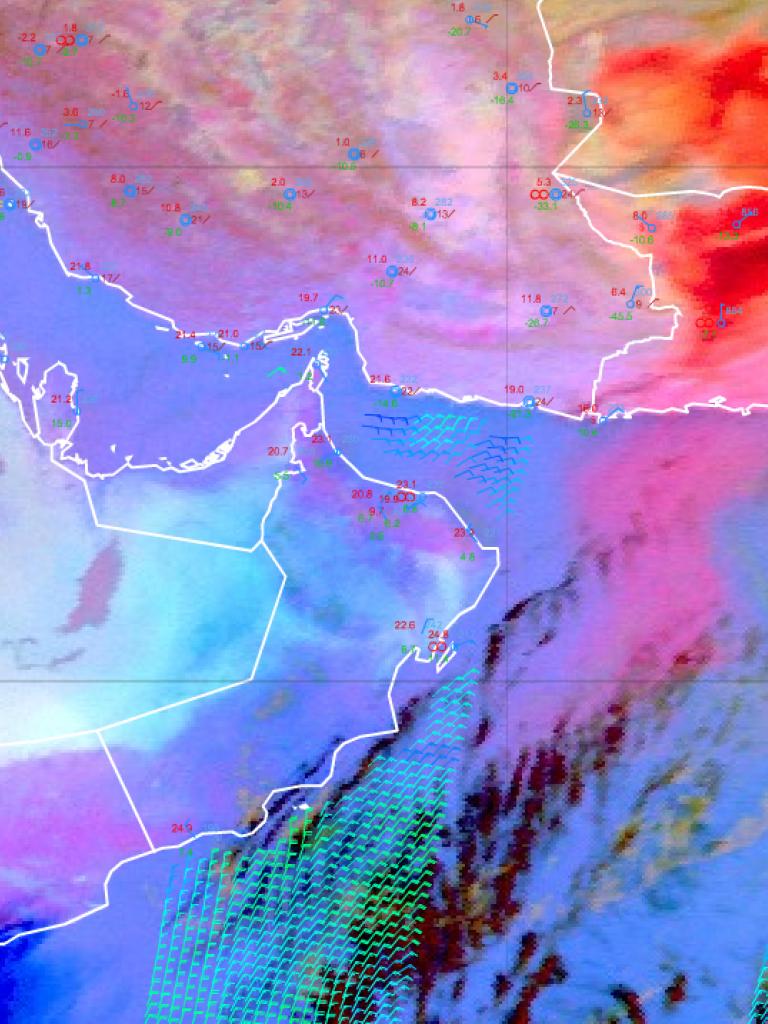 Dust outbreak over Afghanistan