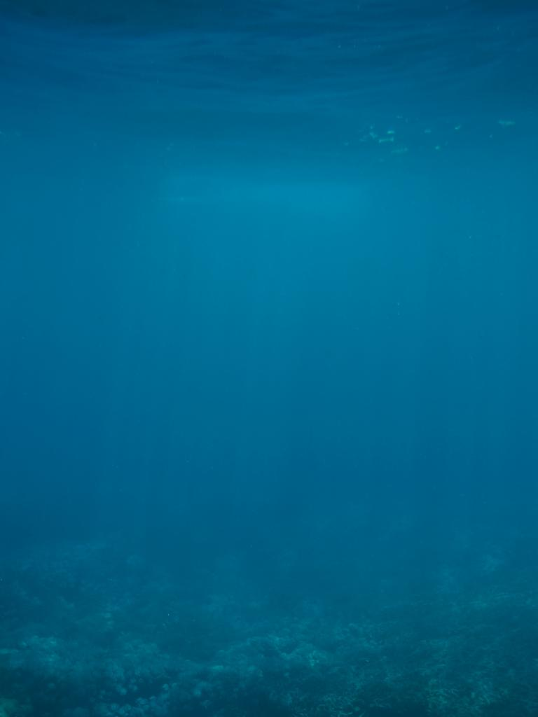 Below the ocean's surface