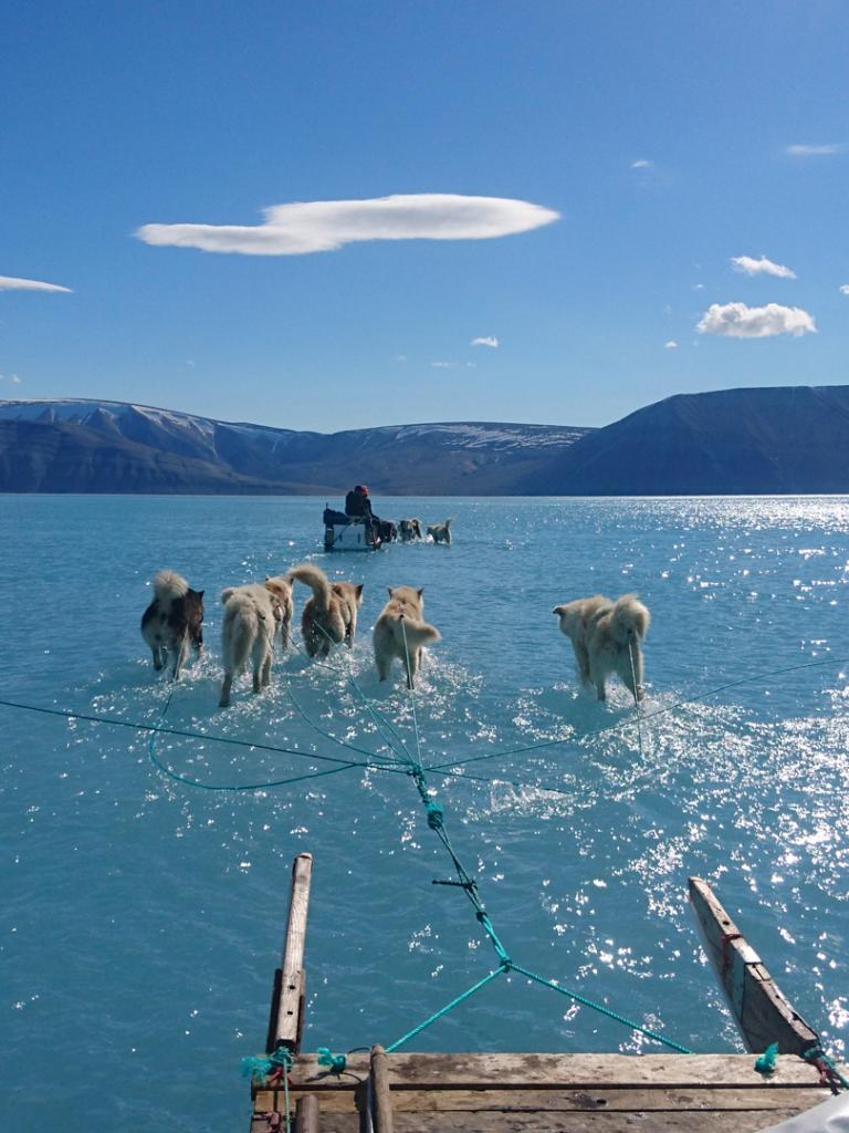 Arctic sea ice minimum 2019 – how did it fare this year