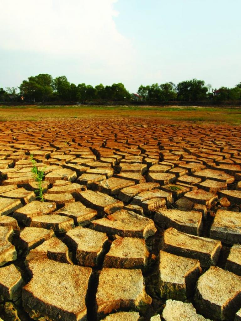 How satellites can help detect impending droughts