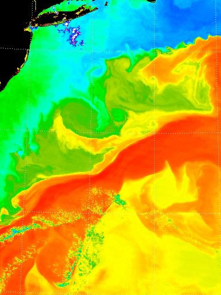 Gulf Stream temperature