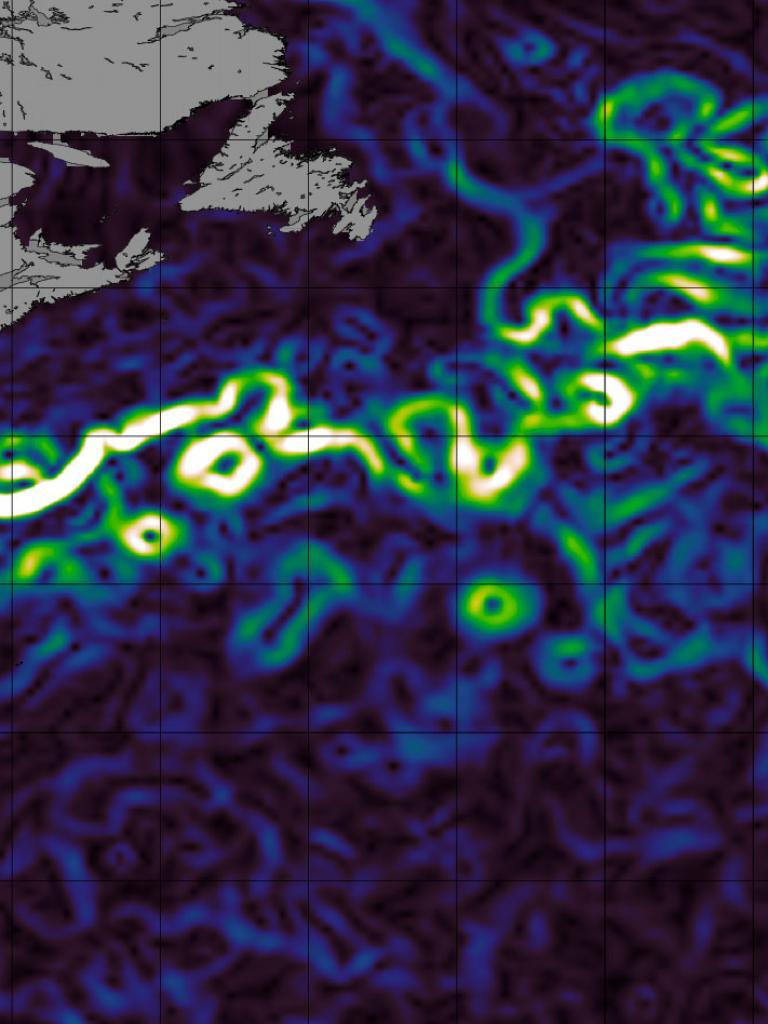 Geostrophic current velocities